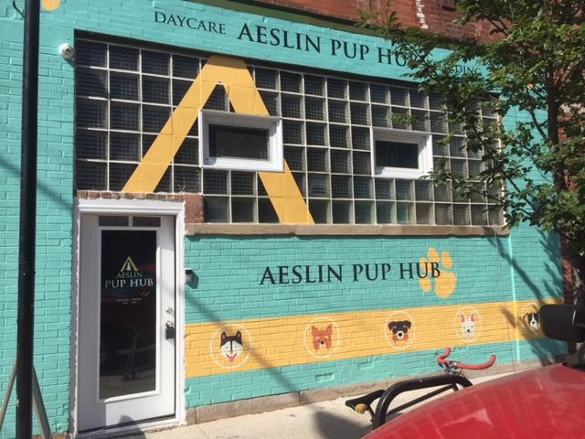 Aeslin Pup Hub Bucktown